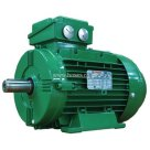 Wonder Power, SWE Series Cast Iron Electric Motor, 4 Pole, 400V-50HZ, B3 Mounting