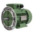 Wonder Power, WE Series Cast Iron Electric Motor, 4 Pole, 400V-50HZ, B35 Mounting