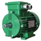 Wonder Power, WEA Series Electric Motor Aluminium, 2 Pole, 400V-50HZ, B3 Mounting